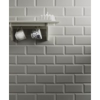 Metro Light Grey Ceramic Wall 100x200mm